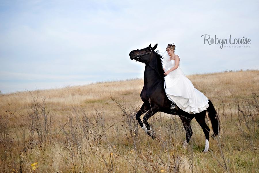 Robyn-Louise-Photography-Beauty-and-Beloved-Horse-Bride-Wedding-Engagement-Photography027
