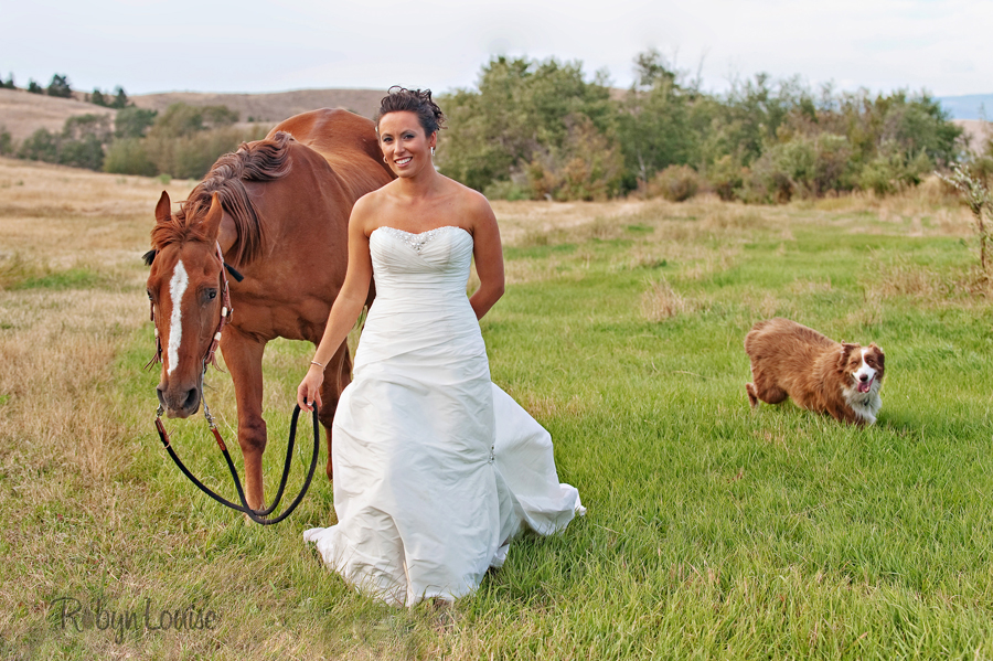 Robyn-Louise-Photography-Beauty-and-Beloved-Horse-Bride-Wedding-Engagement-Photography029