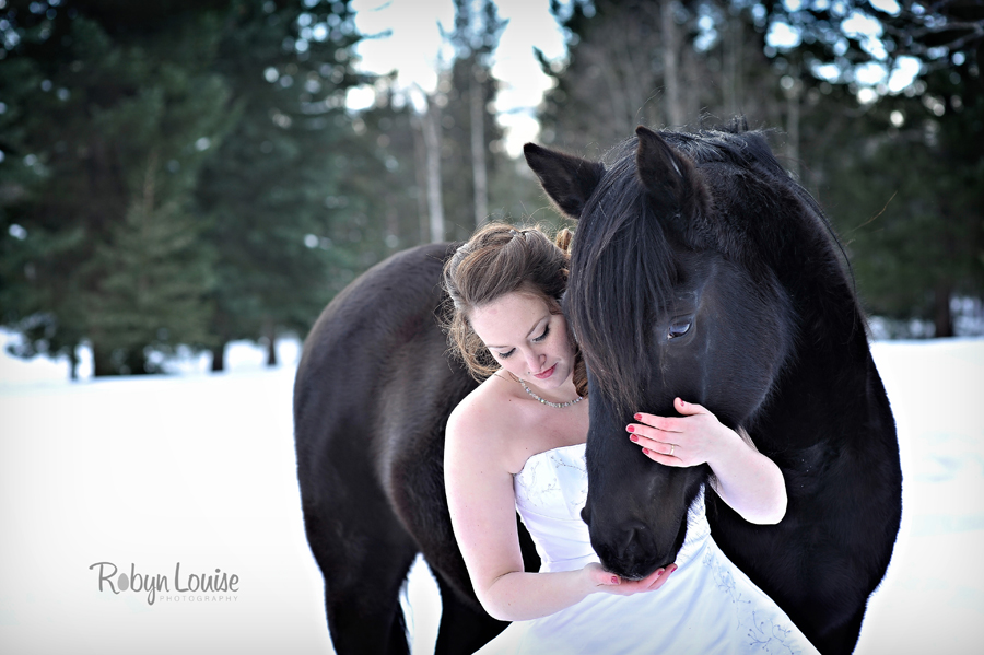 Robyn-Louise-Photography-Beauty-and-Beloved-Horse-Bride-Wedding-Engagement-Photography032